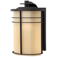 Ledgewood 1 Light 12 inch Museum Bronze Outdoor Wall Lantern in Champagne Inside-Etched, Incandescent