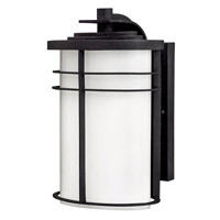 Hinkley Lighting Ledgewood 1 Light Outdoor Wall Lantern in Vintage Black with Cased Opal Glass 1124VK-LED