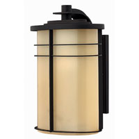 Hinkley Lighting Ledgewood 1 Light Outdoor Wall Lantern in Museum Bronze 1125MR-ES photo thumbnail