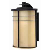 Hinkley Lighting Ledgewood 1 Light Outdoor Wall Lantern in Museum Bronze 1125MR-ESDS photo thumbnail