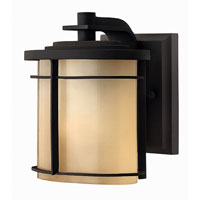 Hinkley Lighting Ledgewood 1 Light Outdoor Wall Lantern in Museum Bronze 1126MR-EST
