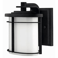 Hinkley Lighting Ledgewood 1 Light Outdoor Wall Lantern in Vintage Black 1126VK-ES