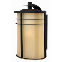 Hinkley Lighting Ledgewood 1 Light Outdoor Wall Lantern in Museum Bronze 1129MR-EST photo thumbnail
