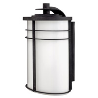Hinkley 1129VK-GU24 Ledgewood 1 Light 20 inch Vintage Black Outdoor Wall in Cased Opal, GU24