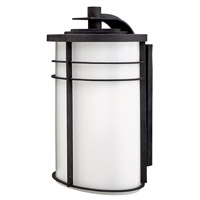 Hinkley Lighting Ledgewood 1 Light Outdoor Wall Lantern in Vintage Black with Cased Opal Glass 1129VK-LED
