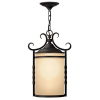 Casa 1 Light 12 inch Olde Black Outdoor Hanging Lantern in Incandescent