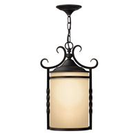 Casa 1 Light 12 inch Olde Black Outdoor Hanging Lantern in LED, Light Etched Amber Glass