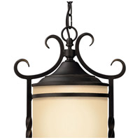 Hinkley 1142OL Casa 1 Light 12 inch Olde Black Outdoor Hanging Light in Incandescent alternative photo thumbnail