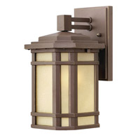 Cherry Creek 1 Light 11 inch Oil Rubbed Bronze Outdoor Wall Lantern in Amber Linen, Incandescent