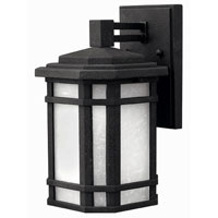 Hinkley Lighting Cherry Creek 1 Light Outdoor Wall Lantern in Vintage Black 1270VK-ES