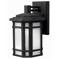 Hinkley Lighting Cherry Creek 1 Light Outdoor Wall Lantern in Vintage Black 1270VK-ESDS