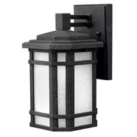 Cherry Creek LED 11 inch Vintage Black Outdoor Wall Lantern in White Linen