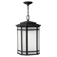 Hinkley 1272VK-GU24 Cherry Creek 1 Light 12 inch Vintage Black Outdoor Hanging in White Linen, GU24 photo thumbnail