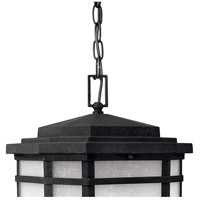 Hinkley 1272VK Cherry Creek 1 Light 12 inch Vintage Black Outdoor Hanging Light in Incandescent alternative photo thumbnail