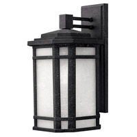 Cherry Creek 1 Light 15 inch Vintage Black Outdoor Wall in White Linen, GU24