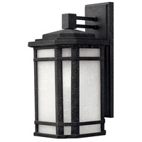 Cherry Creek 1 Light 15 inch Vintage Black Outdoor Wall Mount in White Linen, Incandescent