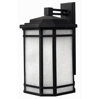 Hinkley Lighting Cherry Creek 1 Light Outdoor Wall Lantern in Vintage Black 1275VK-DS