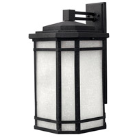 Cherry Creek LED 21 inch Vintage Black Outdoor Wall Lantern in White Linen