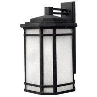 Cherry Creek 1 Light 21 inch Vintage Black Outdoor Wall Mount in White Linen, Incandescent