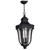 Hinkley 1312MB-GU24 Trafalgar 1 Light 12 inch Museum Black Outdoor Hanging in GU24, Clear Seedy Glass