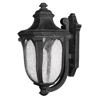Hinkley Lighting Trafalgar 1 Light Outdoor Wall Lantern in Museum Black 1314MB-EST
