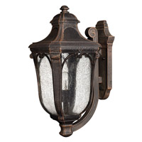 Trafalgar 1 Light 17 inch Mocha Outdoor Wall in GU24, Clear Seedy Glass