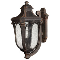 Trafalgar 1 Light 18 inch Mocha Outdoor Wall Lantern in Incandescent