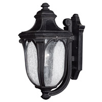 Hinkley 1314MB-GU24 Trafalgar 1 Light 18 inch Museum Black Outdoor Wall Lantern in GU24, Clear Seedy Glass