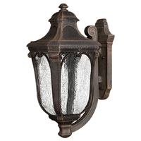 Hinkley Lighting Trafalgar 1 Light Outdoor Wall Lantern in Mocha 1315MO-ES
