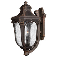 Hinkley 1315MO-GU24 Trafalgar 1 Light 22 inch Mocha Outdoor Wall in GU24, Clear Seedy Glass