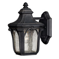 Trafalgar 1 Light 10 inch Museum Black Outdoor Wall in GU24, Clear Seedy Glass