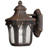 Trafalgar 1 Light 10 inch Mocha Outdoor Mini Wall Mount in Incandescent