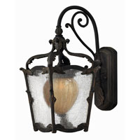 Hinkley Lighting Sorrento 1 Light Outdoor Wall Lantern in Aged Iron 1420AI-ES