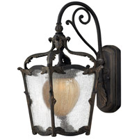 Hinkley Lighting Sorrento 1 Light Outdoor Wall Lantern in Aged Iron 1420AI