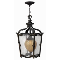 Hinkley Lighting Sorrento 1 Light Outdoor Hanging Lantern in Aged Iron 1422AI-ES photo thumbnail