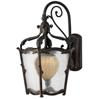 Hinkley 1424AI Sorrento 1 Light 21 inch Aged Iron Outdoor Wall Mount in Clear Seedy and Optic Etched Amber