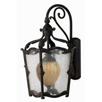 Hinkley Lighting Sorrento 1 Light Outdoor Wall Lantern in Aged Iron 1425AI-ES