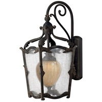 Hinkley 1425AI Sorrento 1 Light 27 inch Aged Iron Outdoor Wall Mount in Clear Seedy and Optic Etched Amber