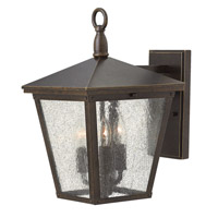 Hinkley Lighting Trellis 1 Light Outdoor Wall Lantern in Regency Bronze with Clear Seedy Glass 1429RB-LED