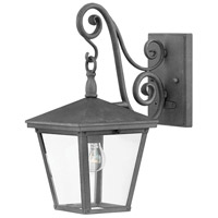 Hinkley 1430DZ Trellis 1 Light 15 inch Aged Zinc Outdoor Wall Lantern, Small