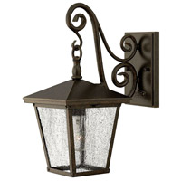 Hinkley Lighting Trellis 1 Light Outdoor Wall Lantern in Regency Bronze 1430RB