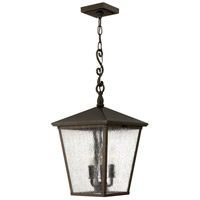 Trellis 1 Light 11 inch Regency Bronze Outdoor Hanging in LED, Clear Seedy Glass