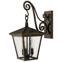 Hinkley 1434RB-LED Trellis 1 Light 20 inch Regency Bronze Outdoor Wall in LED, Clear Seedy Glass photo thumbnail