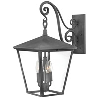 Hinkley 1435DZ Trellis 4 Light 22 inch Aged Zinc Outdoor Wall Lantern, Large