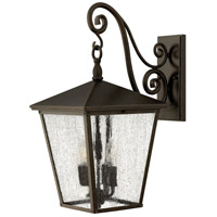 Hinkley 1435RB-LED Trellis 1 Light 22 inch Regency Bronze Outdoor Wall in LED, Clear Seedy Glass