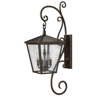 Trellis 4 Light 36 inch Regency Bronze Outdoor Wall Mount in Candelabra, Clear Seedy Glass