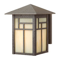 Hinkley Lighting Canyon 1 Light Outdoor Wall Lantern in Forged Iron 1460FI-ES photo thumbnail