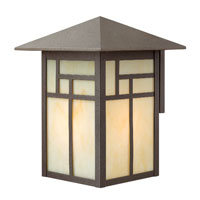 Hinkley Lighting Canyon 1 Light Outdoor Wall Lantern in Forged Iron 1465FI-LED