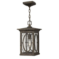 Hinkley Lighting Randolph 1 Light Dark Sky Outdoor Hanging Lantern in Autumn 1492AM-DS photo thumbnail