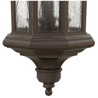 Hinkley 1602OZ Raley 4 Light 12 inch Oil Rubbed Bronze Outdoor Hanging Light in Candelabra, Clear Water Glass Panels alternative photo thumbnail